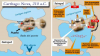 Cartago Nova (Cartagena) en el 210 AC, a la derecha ataque romano a la ciudad en el 209 A