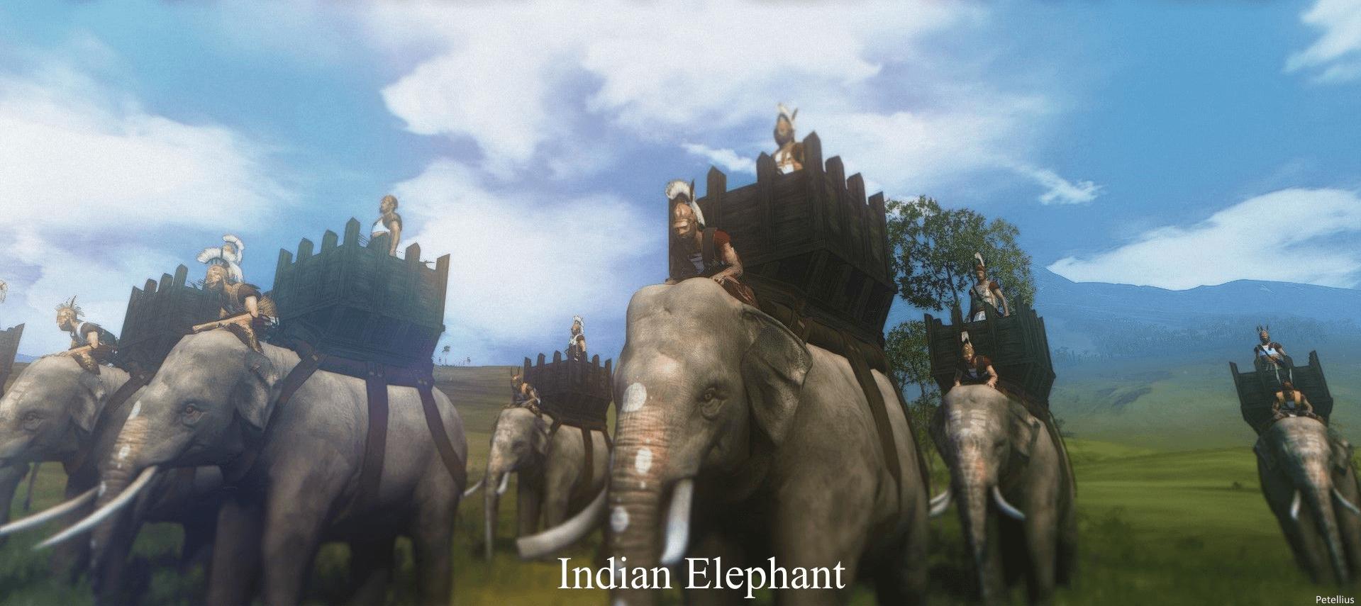 Elefantes de guerra hindues sin protección, seléuco tenía unos 300 con arqueros encima y los situó como reserva
